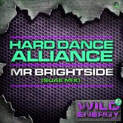 Mr Brightside (Suae Remix)