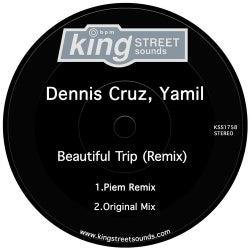 Beautiful Trip (Remix)