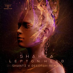 Lepton Head (Shanti v Deedrah Remix)