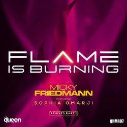 Flame Is Burning (Remixes Part 1)