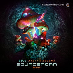 Magic Shrooms (Sourceform Remix)
