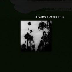 Bigamo Remixed Pt. 3