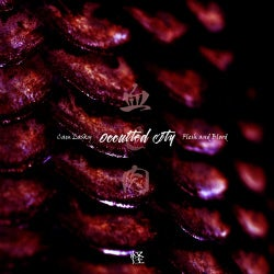 Occulted City Flesh & Blood, Vol. 1