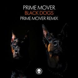 Black Dogs - Prime Mover Remix