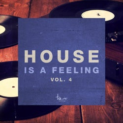 House Is a Feeling, Vol. 4