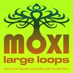 Moxi Large Loops Volume 11
