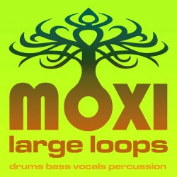Moxi Large Loops Volume 2