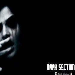 Dark Section