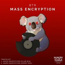Mass Encryption