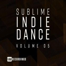Sublime Indie Dance, Vol. 05
