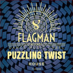 Puzzling Twist House