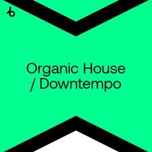 Beatport Best New Organic House / Downtempo Tracks For DJs August 2021