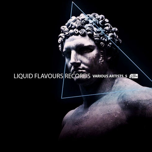 Download Various Artists Vol. 5 [Liquid Flavours] (LFR242) mp3