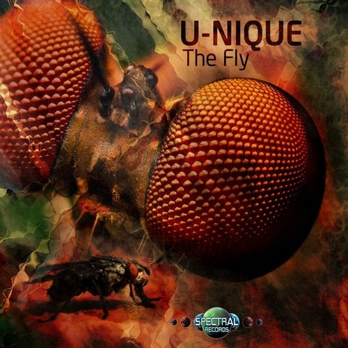 U-Nique - The Fly