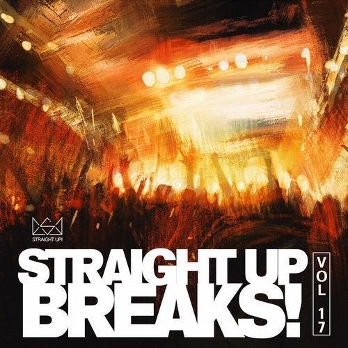 VA - STRAIGHT UP BREAKS! VOL. 17 [LP] 2017