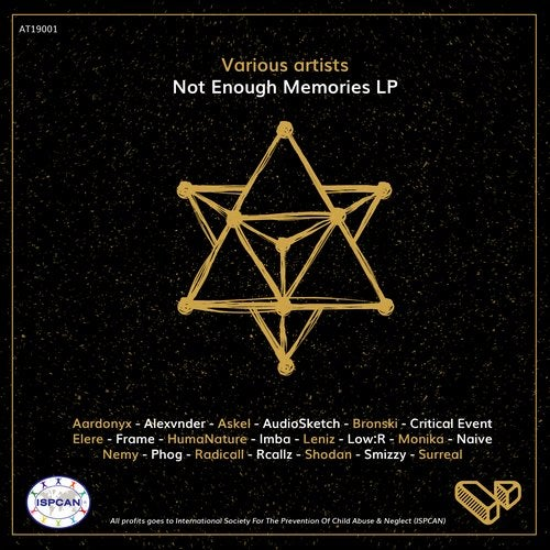 VA - NOT ENOUGH MEMORIES 2019 [LP]