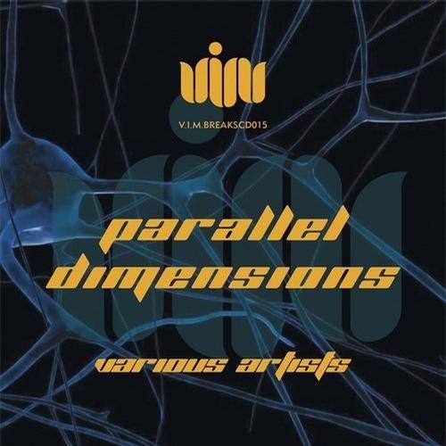 Download VA - Parallel Dimension (VIMBREAKSCD015) mp3
