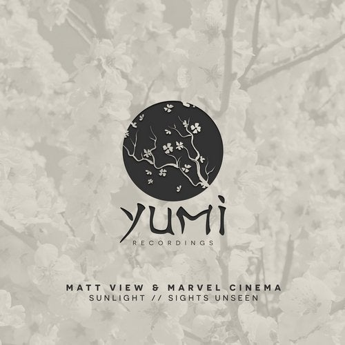 Matt View, Marvel Cinema - Sunlight + Sights Unseen 2019 [EP]