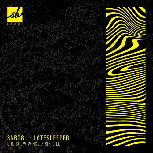 Download Latesleeper - She Grew Wings / Six Gill (SNB081) mp3