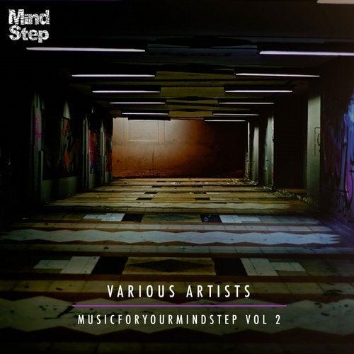 VA - MusicForYourMindStep Vol 2 2015 (LP)