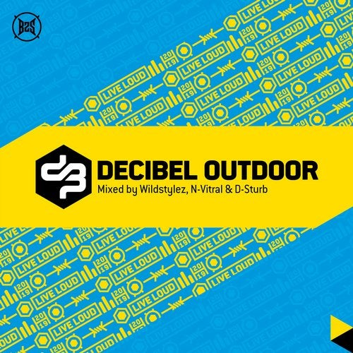 VA - DECIBEL OUTDOOR 2019 [LP] 2019