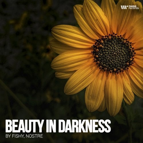 Nostre & Fishy - Beauty Darkness 2019 [EP]
