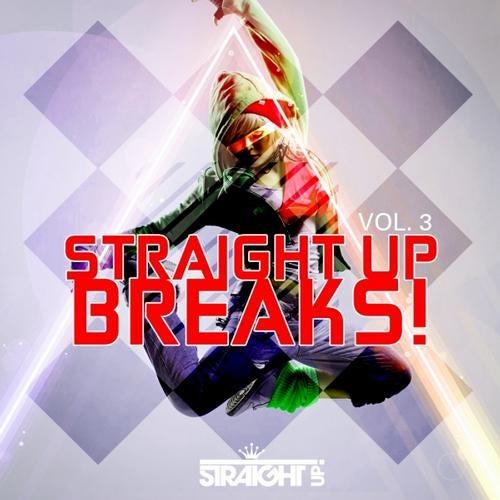 VA - STRAIGHT UP BREAKS! VOL. 3 [LP] 2012