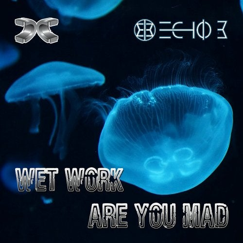 Echo B - Wet Work / Are You Mad 2018 (EP)