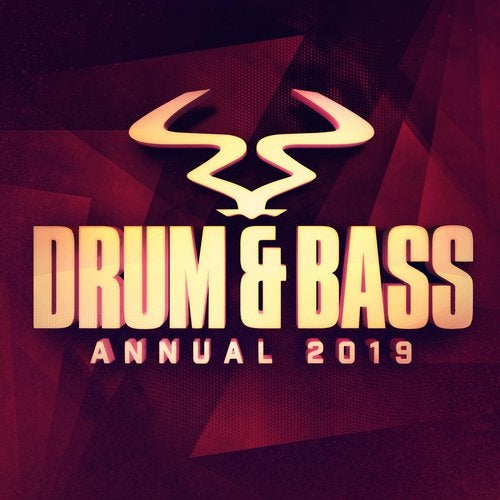 VA - RAM DRUM & BASS ANNUAL [LP] 2019