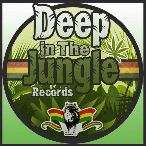 VA - Deep In The Jungle Anthems 3 Sampler (DEEPIN032S1)