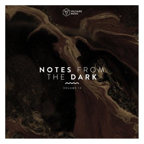 VA - Notes from the Dark, Vol. 13 [VOLTCOMP980] [FLAC]