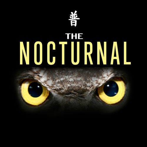 Harley D / Indecision / Teej / Scotty - The Nocturnal