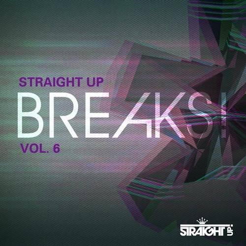 VA - STRAIGHT UP BREAKS! VOL. 6 [LP] 2013