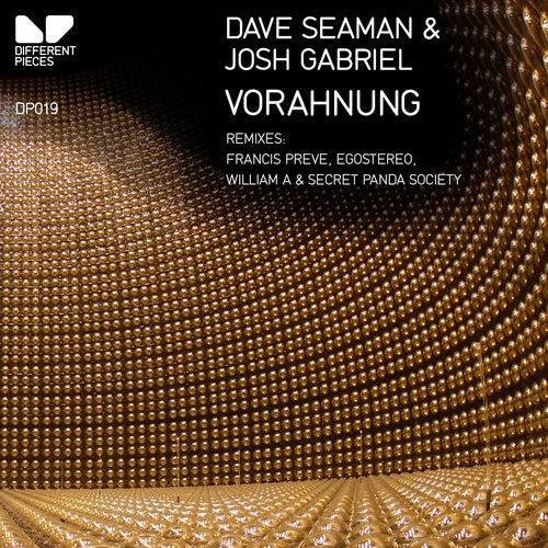 Vorahnung (Secret Panda Society Remix) by Josh Gabriel, Dave