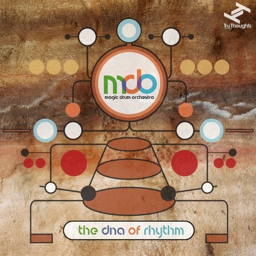 The DNA of Rhythm [Tru Thoughts] :: Beatport