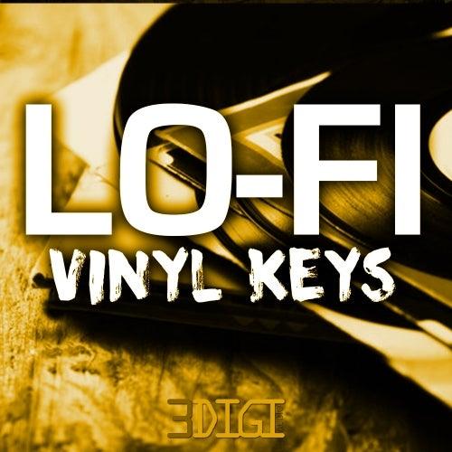 Lo-Fi Vinyl Keys [Innovative Samples]