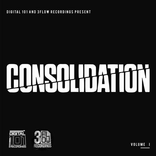 VA — Digital 101 And 3Flow Recordings PresentConsolidation Vol. I (01) (LP) 2018