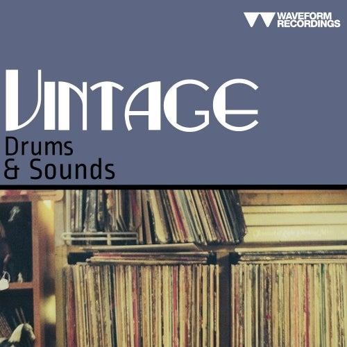 Waveform Recordings Organic Techno WAV.zip