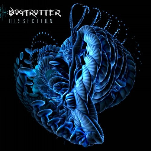 Bogtrotter - Dissection (EP) 2019