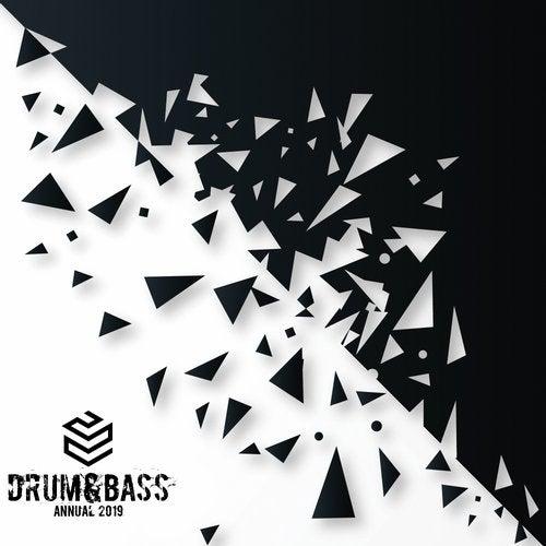 VA - TBR DRUM & BASS ANNUAL 2019 (LP) 2019