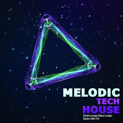 Melodic Tech House [Big Sounds]
