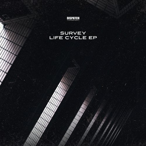 Survey - Life Cycle (EP) 2019
