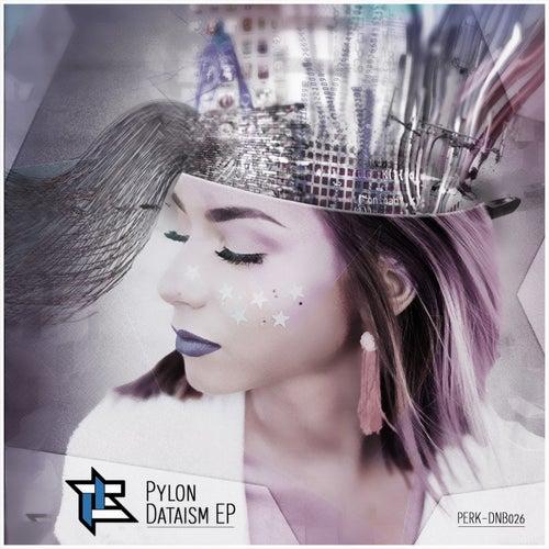 Download Pylon - Dataism EP mp3