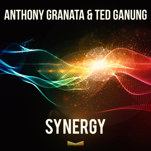 Anthony Granata & Ted Ganung - Synergy [DVR0056]