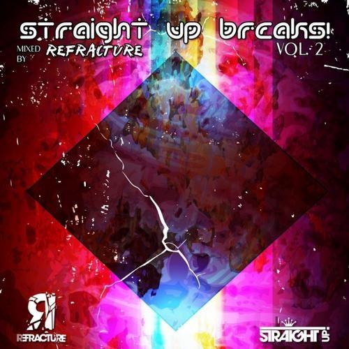 VA - STRAIGHT UP BREAKS! VOL. 2 [LP] 2012