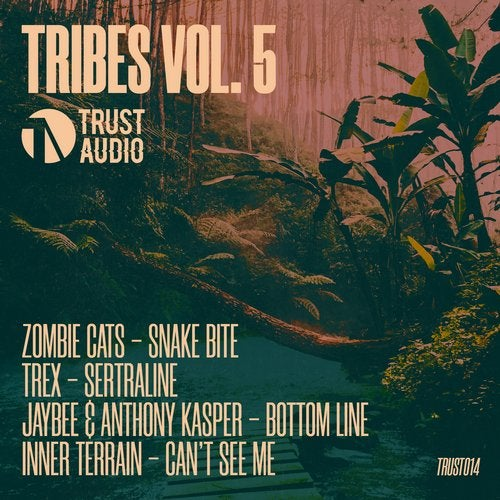 VA - Tribes Vol. 5