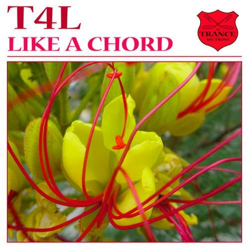 Like A Chord Original Mix By T4l On Beatport