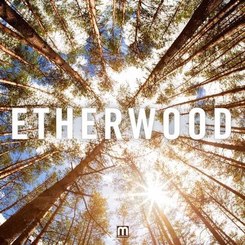 Etherwood - Etherwood (LP) 2013