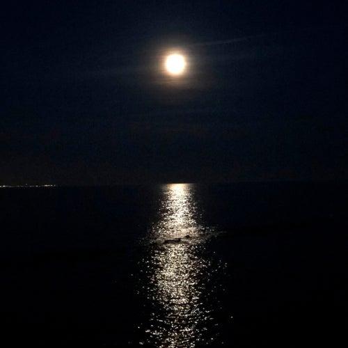 VA – Midnight Tales – (Musique Pour Les Astronautes)