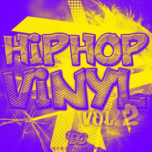 Hip Hop Vinyl 2 [Big Citi Loops]